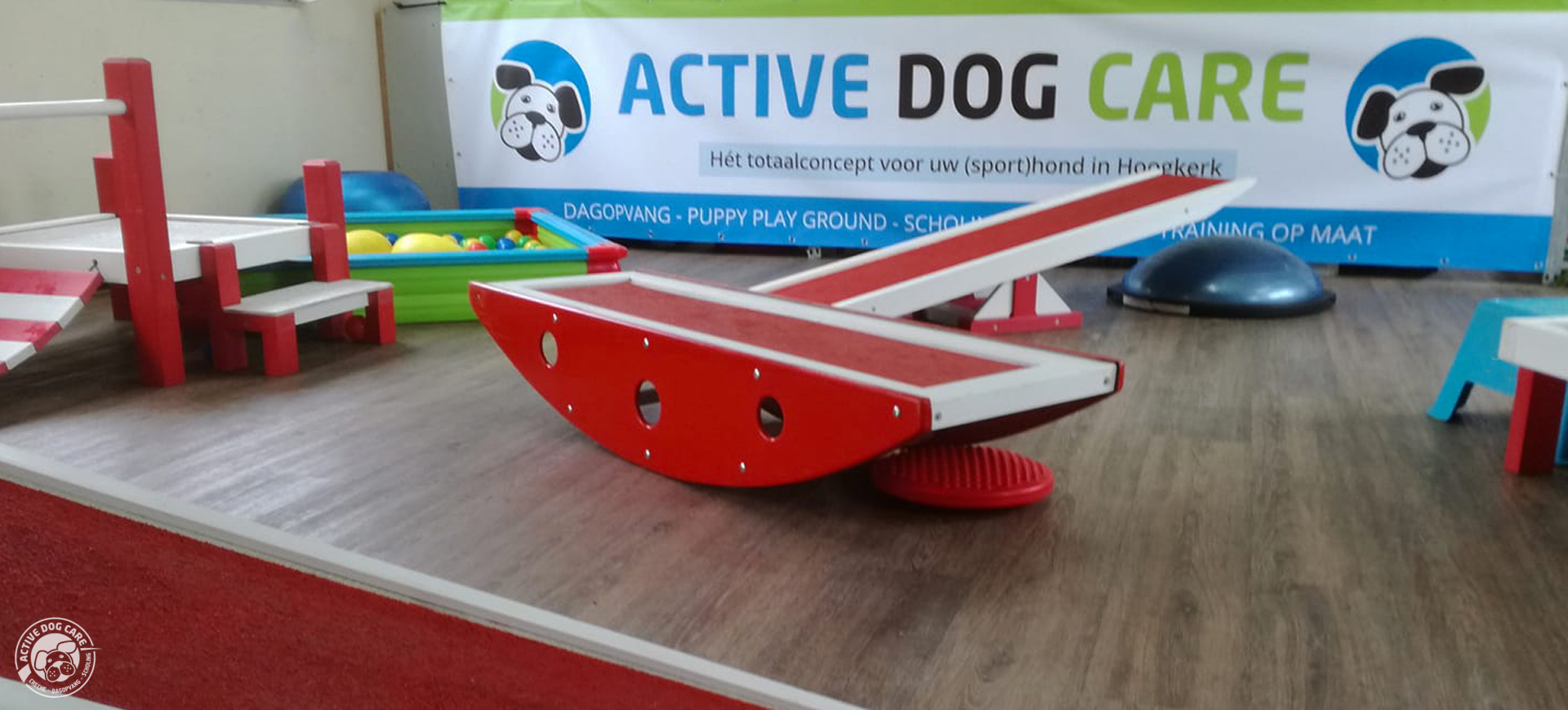Puppy Play Ground in Groningen