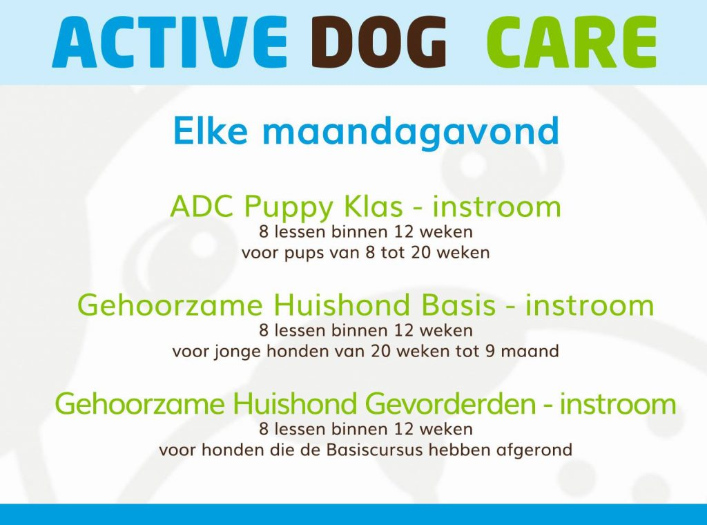 Maandagavondlessen Active Dog Care