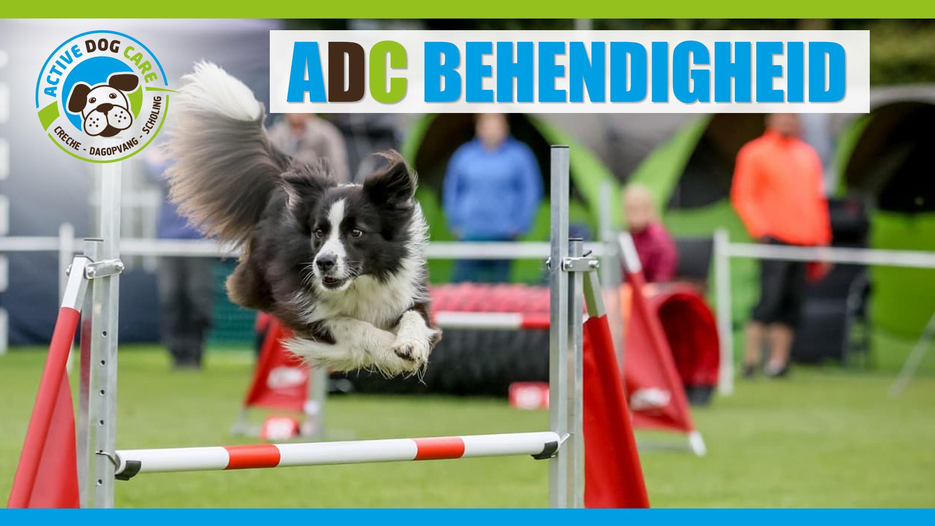 ADC behendigheid