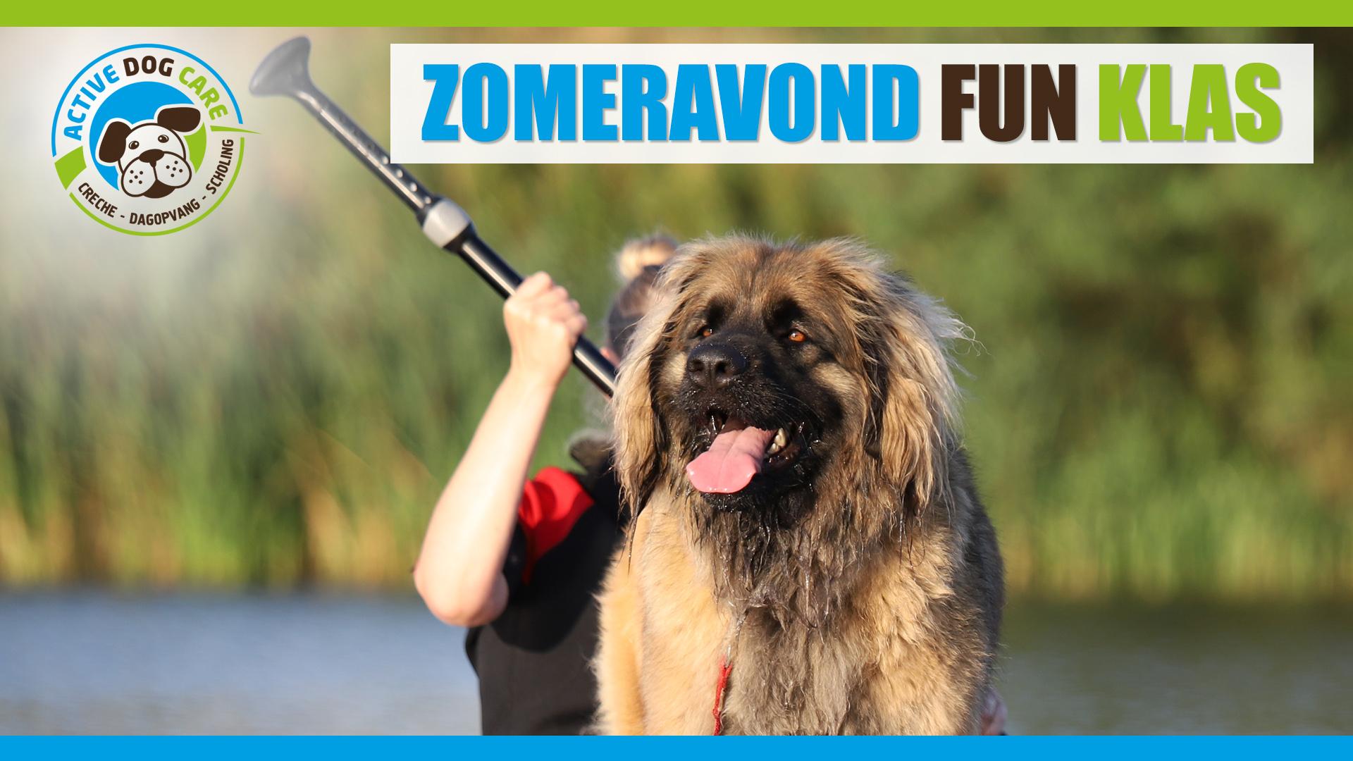 Zomeravond Fun Klas - Active Dog Care